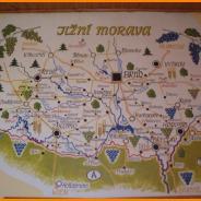 I na jediné vinici na Vysočině vědí, kde leží Dačice!
